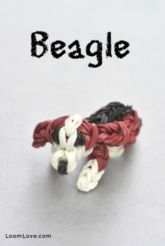 beagle rainbow loom
